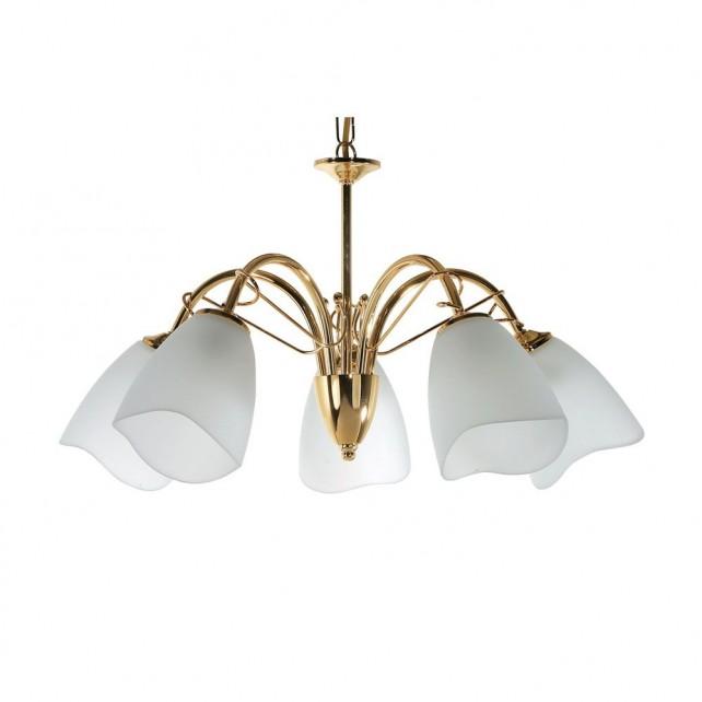 Turin Decorative Ceiling Light - 5 Light, Brass