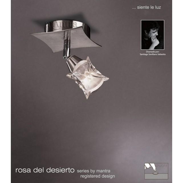 Rosa Del Desierto Switched 1L Spot Light Satin Nickel