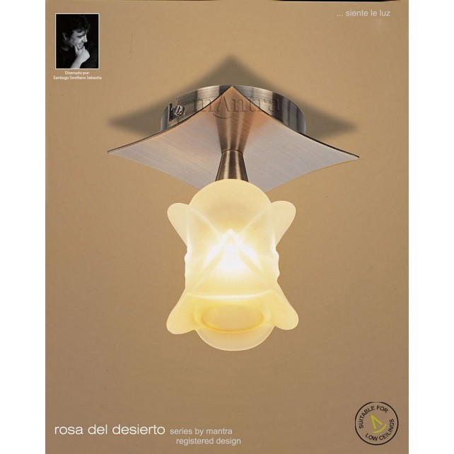 Rosa Del Desierto Antique Brass Fixed Ceiling 1 Light Antique Brass