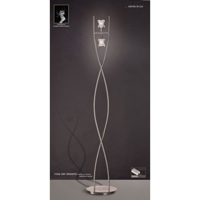Rosa Del Desierto Floor Lamp 2 Lights Satin Nickel